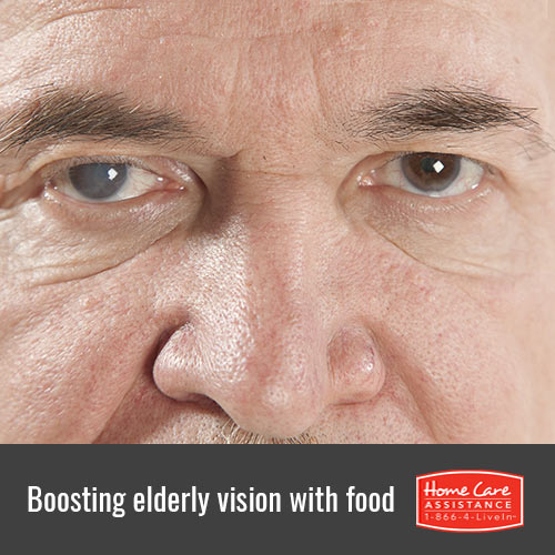 Foods That Improve Senior Eyesight