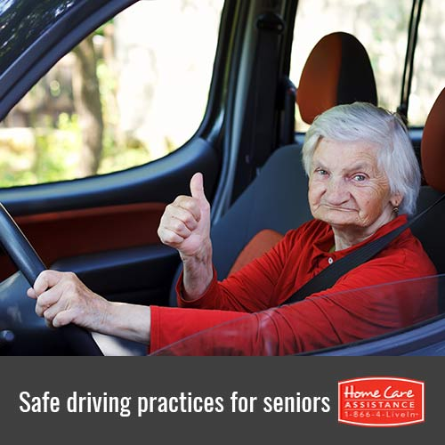 How Seniors Can Drive Safely in Tampa Bay, FL