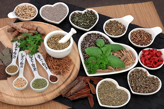 Bone Marrow Recovery With Chinese Herb in Tampa Bay, CA
