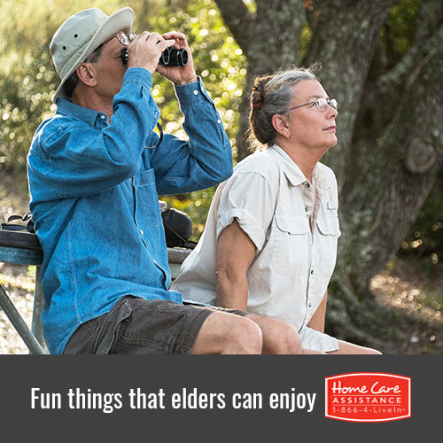 Events that the Elderly Can Enjoy in Tampa Bay, FL