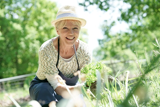 Healthy Activities for Seniors with Mobility Challenges in Tampa Bay, FL