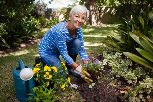 Can Gardening Boost Cognitive Health in Older Adults in Tampa Bay, FL