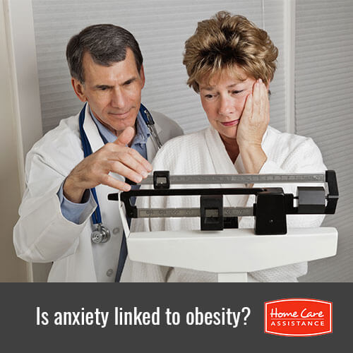 How Anxiety and Obesity Can Be Linked in Tampa Bay, FL