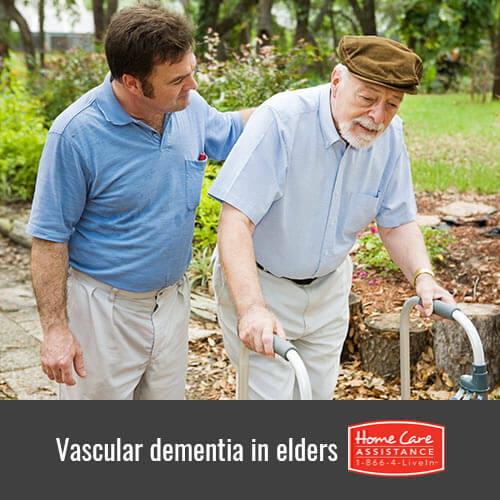 Must Known Facts about Vascular Dementia in Tampa Bay, FL
