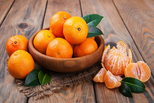 Top Power Fruits for Seniors in Tampa Bay, FL