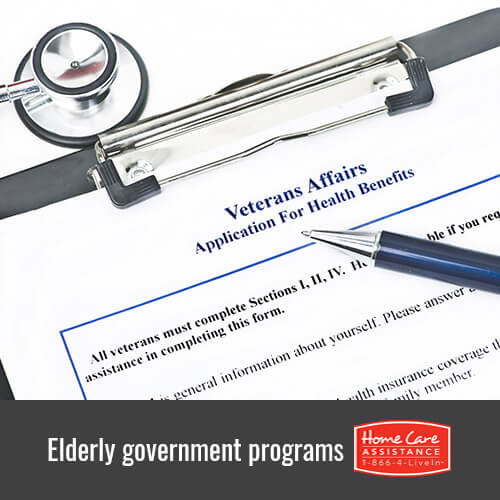 6 Essential Government Programs for Seniors in Tampa Bay, FL