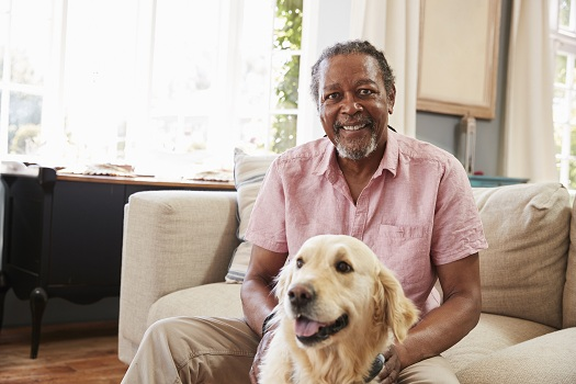 Why an Elderly Loved One Should Adopt a Pet in Tampa Bay, FL